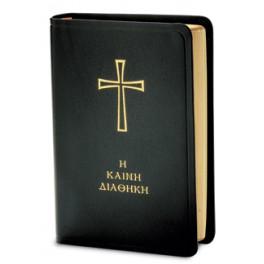 The New Testament diglot