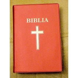 Romanian New Testament